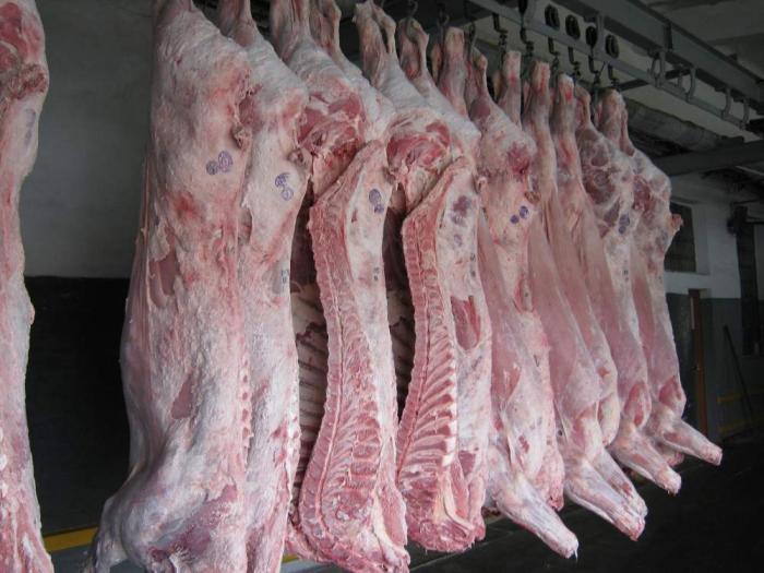 при производстве стоимость баранины в крыму выборе термобелья обязательно